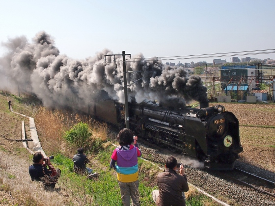 Steam Locomotive in Koriyama
